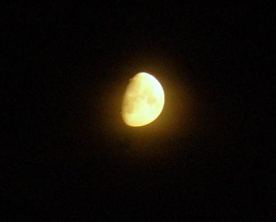 Lokakuun kuu Vuosaaressa