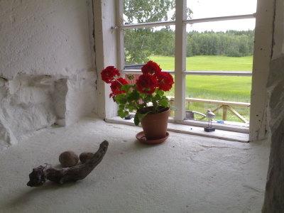 Näkymä ravintola Stallkrogenin ikkunasta