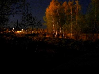 Sähkövalo loimuttaa puut entisen puhdistamon reunalla
