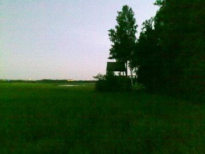 Villa Elfvikin lintutorni