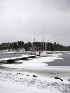 Itätuuli kieputtaa talvehtijoita kolmoslaiturissa